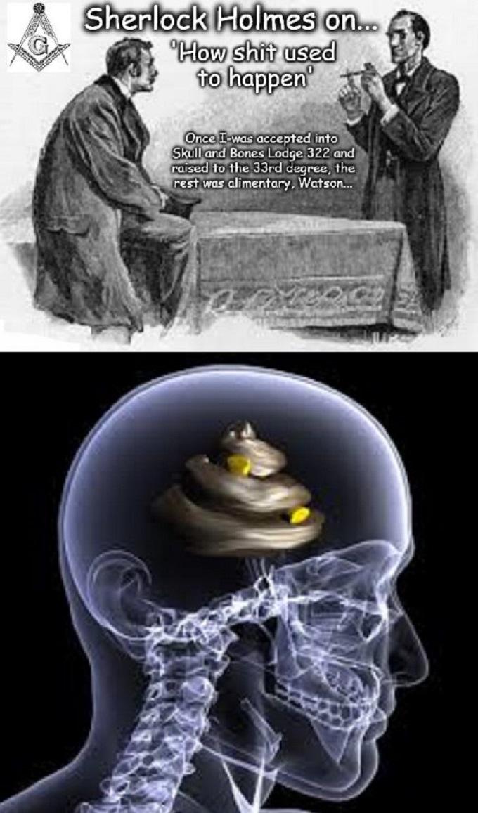 Sherlock No Shit skull