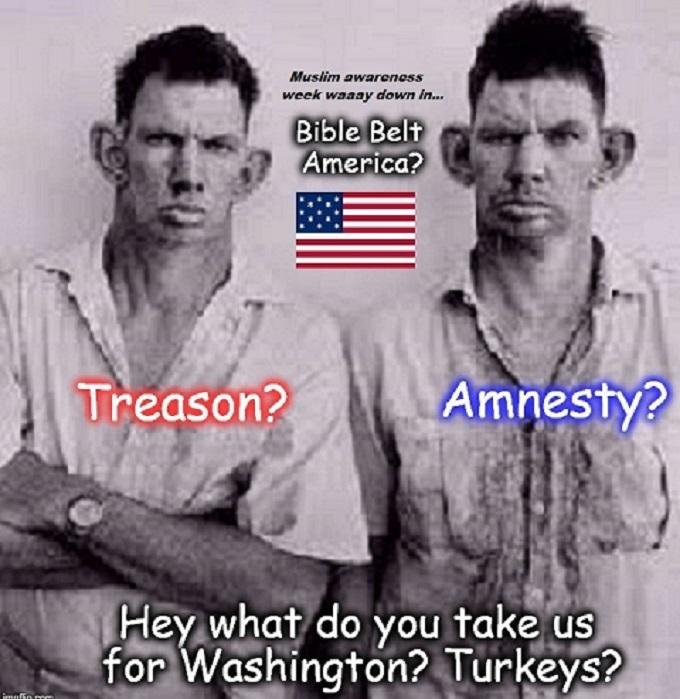 Treason Amnesty Bible Belt inbred Muslim awareness week (2)