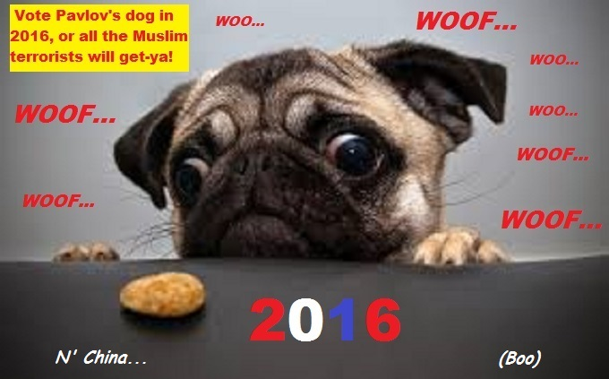 cross-eyed-pavlovs-pug-dog-muslim-terror-2016 China Boo