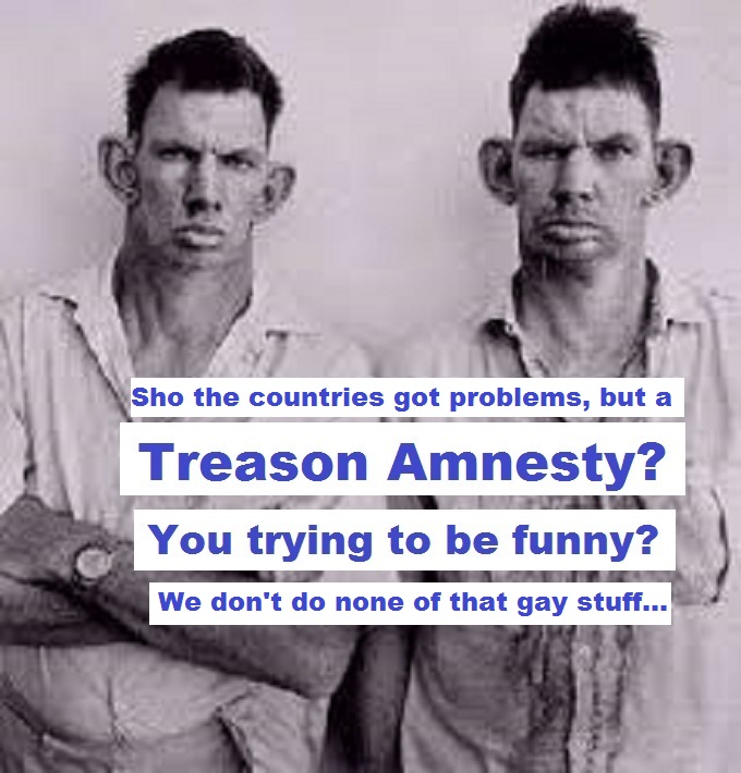Inbred Hillbilly treason amnesty GAY STUFF
