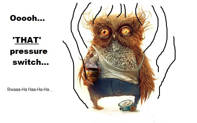 Owl Owly frazzle pressure switch